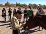 Santa Fe University Horse Club